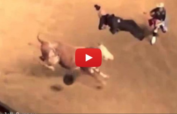 VIDEO: Photographer tossed by rodeo bull