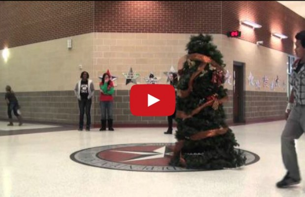 VIDEO: Christmas Tree Prank