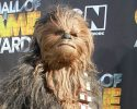 Chewbacca from Star Wars Cartoon Network 'Hall of Game Awards' held at The Barker Hanger Santa Monica, California - 21.02.11  Featuring: Chewbacca from Star Wars Where: California, United States When: 21 Feb 2011 Credit: WENN